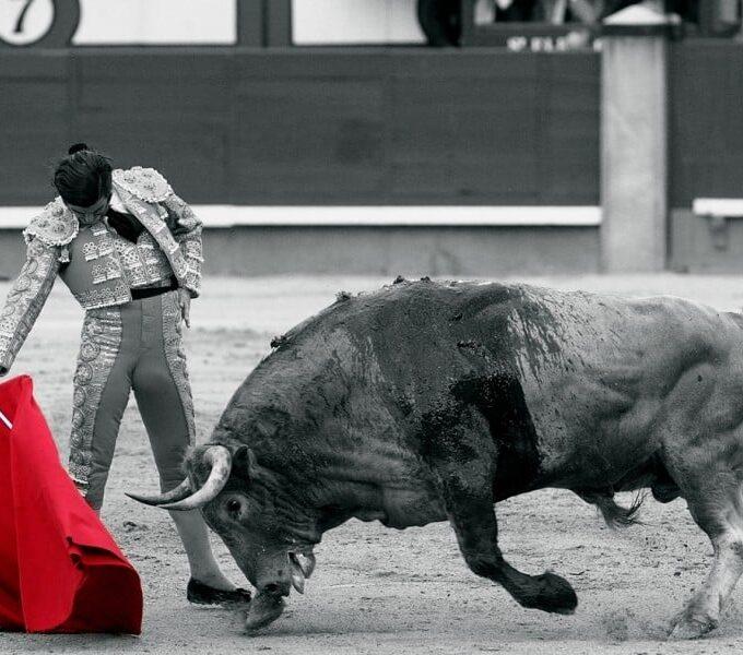 Muletazo en Las Ventas