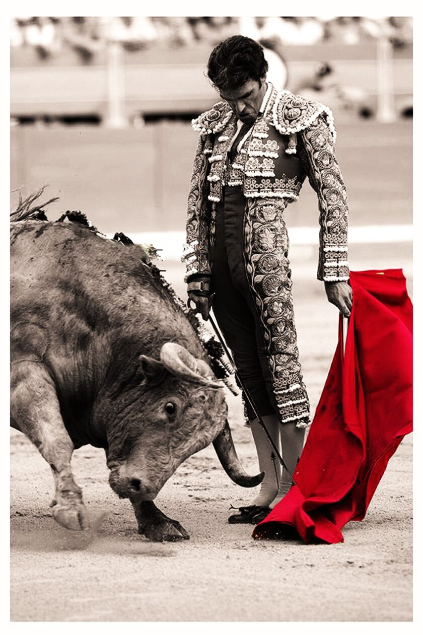 Picture the greatness of jose tomas bullfighter